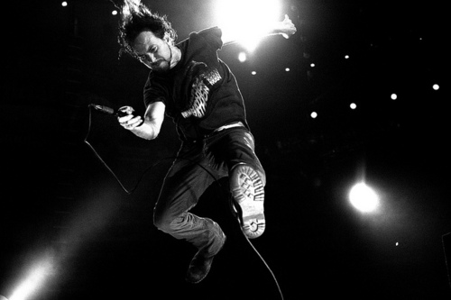 eddie vedder rise lyrics