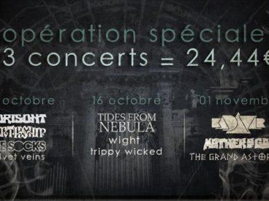 Stoned-Gatherings-2012