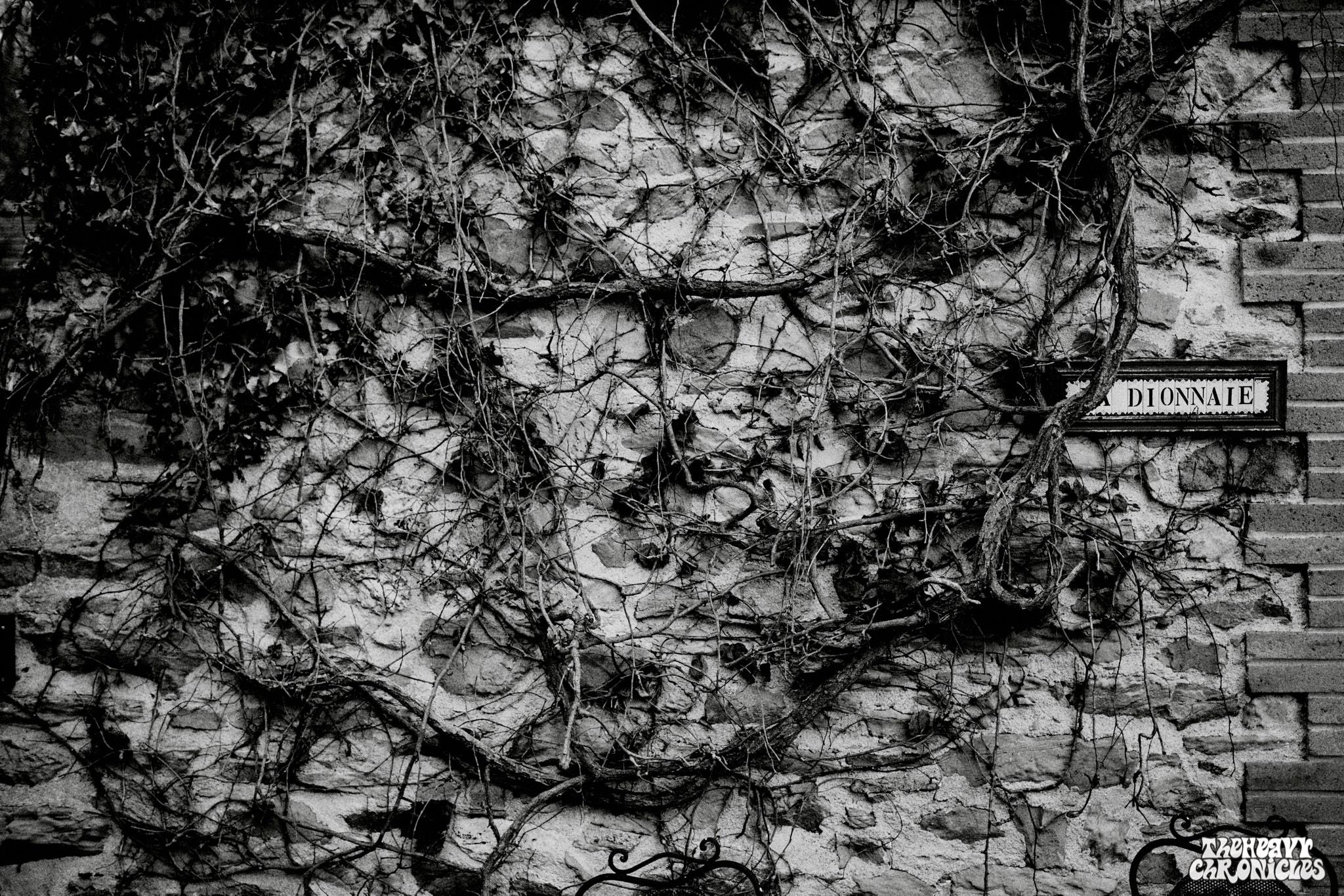 Elder-Studio-Black-Box-2019-Gael-Mathieu-The-Heavy-Chronicles-0