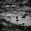 Elder-Studio-Black-Box-2019-Gael-Mathieu-The-Heavy-Chronicles-61